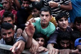 tribune-migrants