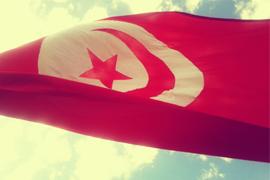 AMF-tunisie_min